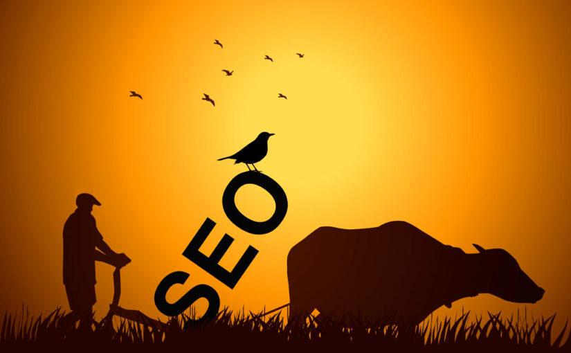 Hva gjør en SEO-konsulent?